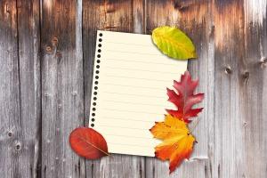 autumn-1649207_960_720